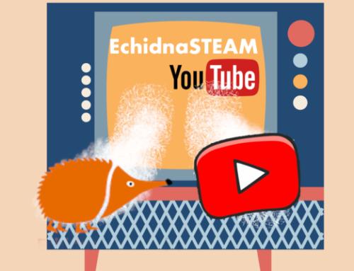 Canal YouTube de EchidnaSTEAM