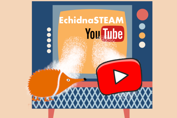 Canal YouTube de EchidnaSTEAM