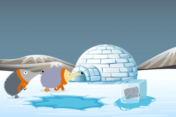Echidna en el Ártico